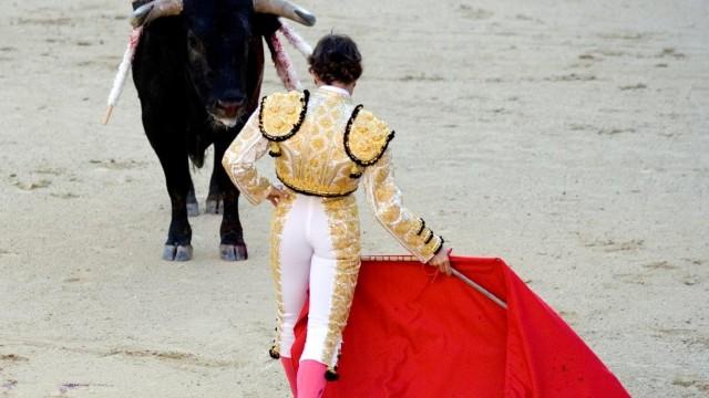 Matador mit rotem Tuch vor einem Stier