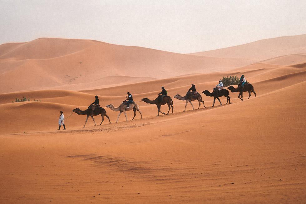 Karawane Touristen auf Kamelen