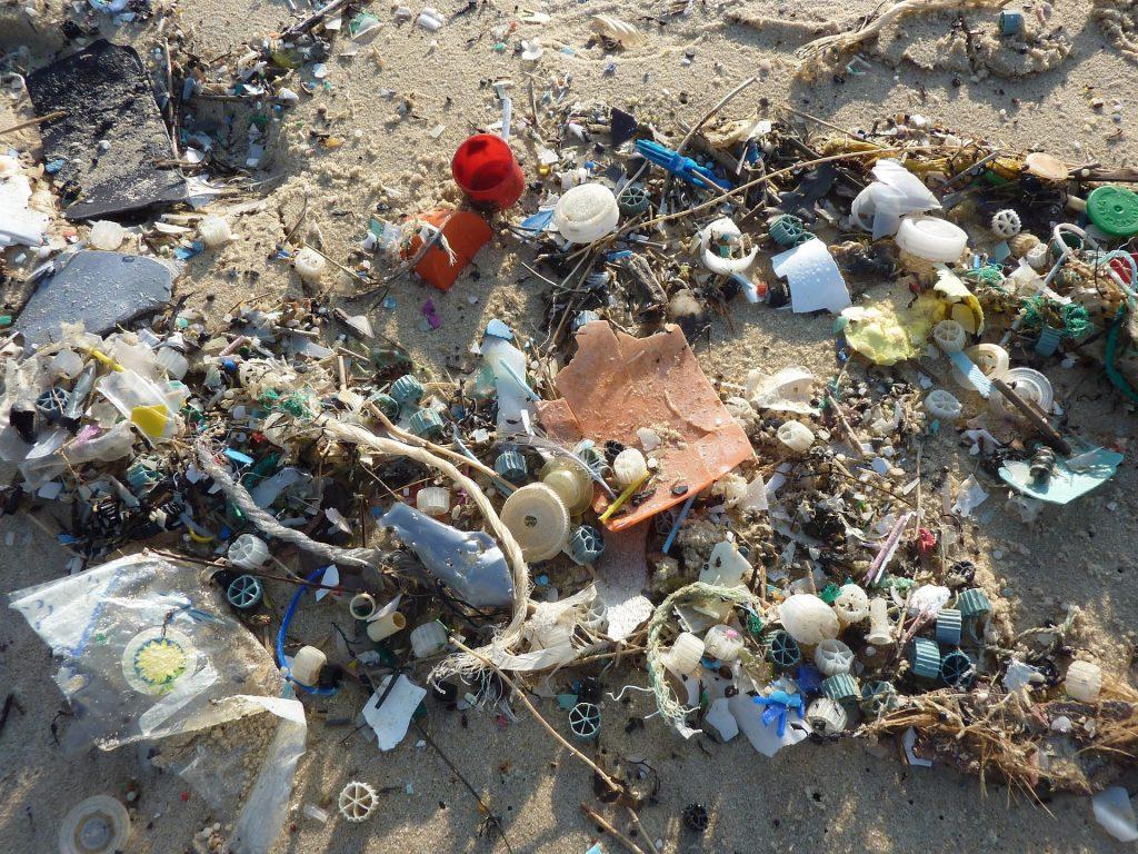 Müllfischen holt Müll aus dem Wasser