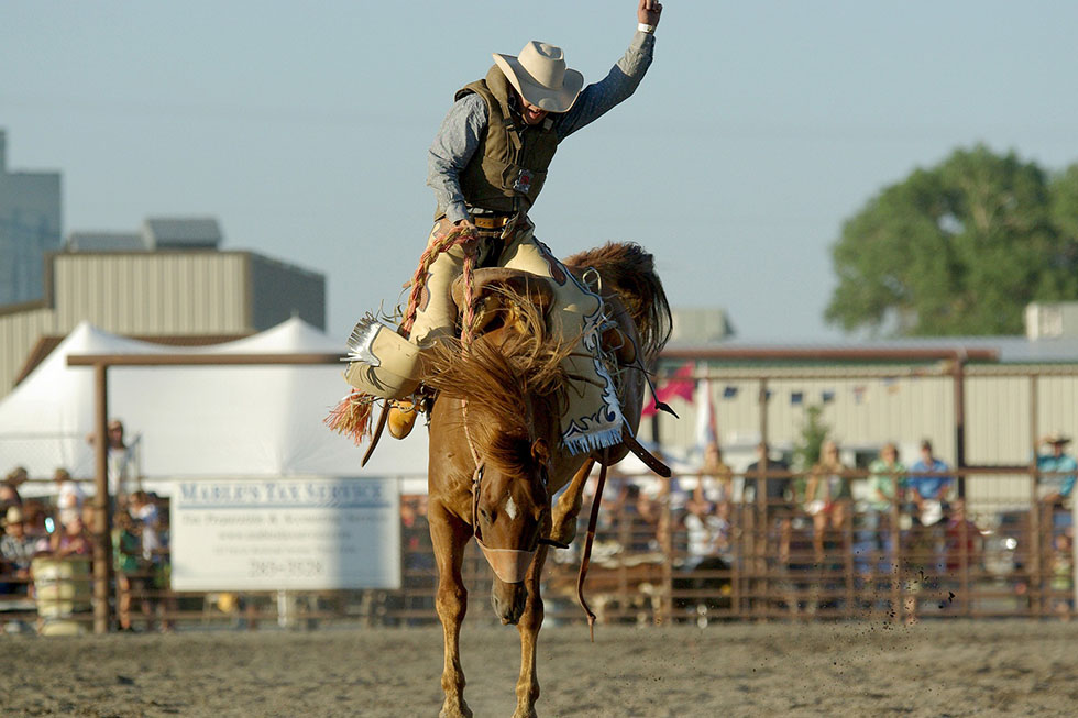 cowboy auf dem pferd